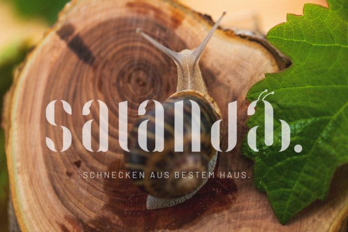 SALANDA Schnecken 2019-05-14